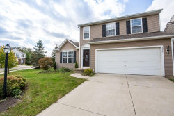Photo of 3314 Fenmore Ln, Aurora, OH 44202 (MLS # 4142486)