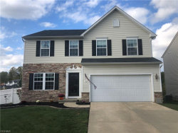 Photo of 38097 North Brooks Dr, Willoughby, OH 44094 (MLS # 4142600)