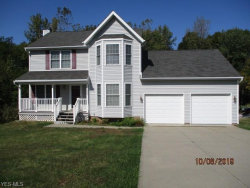 Photo of 1005 Frost Rd, Streetsboro, OH 44241 (MLS # 4143182)