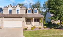 Photo of 4013 Falconswalk Ct, Unit 15, Stow, OH 44224 (MLS # 4143689)