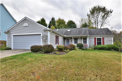 Photo of 12154 Waywood Dr, Twinsburg, OH 44087 (MLS # 4143751)