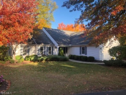 Photo of 235 Manor Brook Dr, Chagrin Falls, OH 44022 (MLS # 4145746)