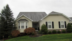 Photo of 6866 Twin Oaks Ct, Canfield, OH 44406 (MLS # 4154764)