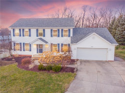 Photo of 2339 Sandalwood Dr, Twinsburg, OH 44087 (MLS # 4157543)