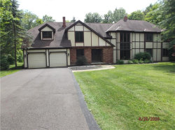 Photo of 2920 State Route 82, Aurora, OH 44202 (MLS # 4158074)