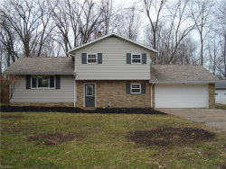 Photo of 6672 Oakdale Rd, Mentor, OH 44060 (MLS # 4160387)