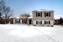 Photo of 825 South Parkview Dr, Aurora, OH 44202 (MLS # 4163094)