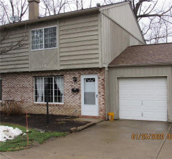 Photo of 9653 Ryan Dr, Mentor, OH 44060 (MLS # 4163317)