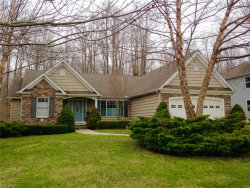 Photo of 12254 Summerwood Dr, Concord, OH 44077 (MLS # 4174195)