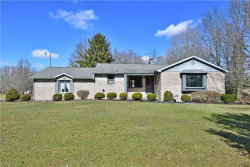 Photo of 6267 Amy Boyle Rd Northeast, Brookfield, OH 44403 (MLS # 4174782)