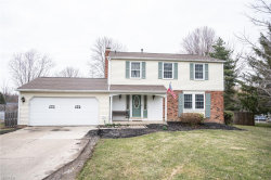 Photo of 10217 Hoose Rd, Concord, OH 44060 (MLS # 4175086)