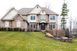 Photo of 8024 Daisy Hill Ct, Concord, OH 44077 (MLS # 4176913)