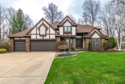 Photo of 11380 Mourning Dove Pl, Concord, OH 44077 (MLS # 4178689)