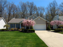 Photo of 4632 Spinnaker Ct, Mentor, OH 44060 (MLS # 4178908)