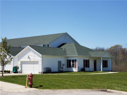 Photo of 16480 Cottonwood Pl, Middlefield, OH 44062 (MLS # 4188394)