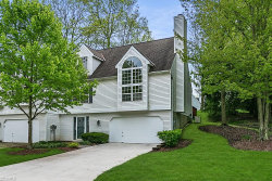 Photo of 10445 White Ash Trl, Twinsburg, OH 44087 (MLS # 4189285)
