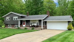 Photo of 32 South Shore Dr, Youngstown, OH 44512 (MLS # 4190140)