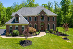 Photo of 11324 Rolling Meadows Dr, Garrettsville, OH 44231 (MLS # 4191226)