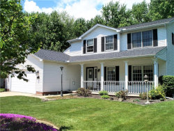 Photo of 7795 Champaign Dr, Mentor, OH 44060 (MLS # 4194478)
