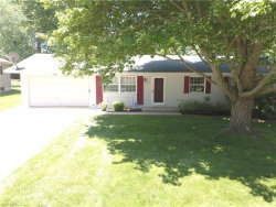 Photo of 3682 Vira Rd, Stow, OH 44224 (MLS # 4194548)