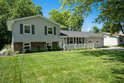 Photo of 2306 South Turner Rd, Austintown, OH 44515 (MLS # 4195222)