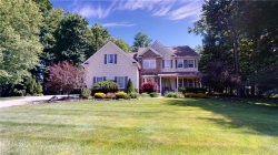 Photo of 12263 Meredith Ln, Concord, OH 44077 (MLS # 4195745)