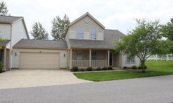 Photo of 3961 Falconswalk Ct, Stow, OH 44224 (MLS # 4196331)
