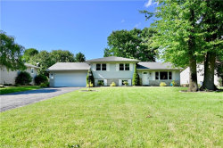 Photo of 6900 Colleen Dr, Boardman, OH 44512 (MLS # 4196689)