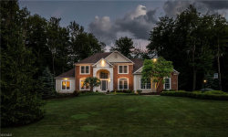 Photo of 396 West Homestead Dr, Aurora, OH 44202 (MLS # 4196816)