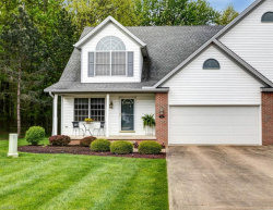 Photo of 384 Northcoast Point Dr, Eastlake, OH 44095 (MLS # 4197237)