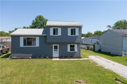 Photo of 9885 Bright Dr, Windham, OH 44288 (MLS # 4198539)