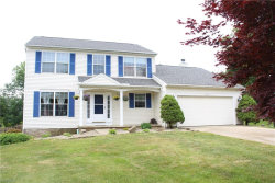 Photo of 10036 Deerfield Ct, Twinsburg, OH 44087 (MLS # 4198690)
