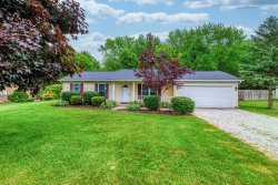 Photo of 1705 Red Bird Rd, Madison, OH 44057 (MLS # 4198812)