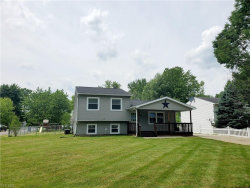 Photo of 9129 Hickory Cir, Windham, OH 44288 (MLS # 4200681)
