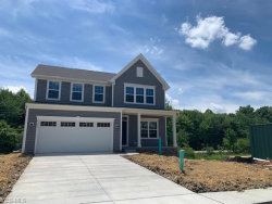 Photo of 8797 Merryvale Ln, Twinsburg, OH 44087 (MLS # 4201291)