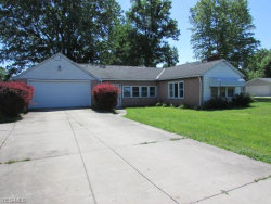 Photo of 4532 State Route 44, Ravenna, OH 44266 (MLS # 4201736)