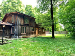 Photo of 8675 State Route 303, Windham, OH 44288 (MLS # 4201899)