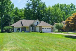 Photo of 7066 Brownell Dr, Mentor, OH 44060 (MLS # 4202502)