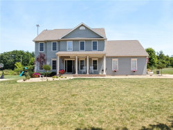 Photo of 4225 Fairfax Dr, Canfield, OH 44406 (MLS # 4202799)