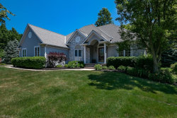 Photo of 7269 Waterfowl Way, Concord, OH 44077 (MLS # 4202852)