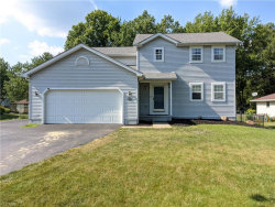 Photo of 1256 Shields Rd, Youngstown, OH 44511 (MLS # 4203552)