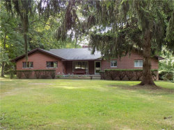 Photo of 3232 Cannon Rd, Twinsburg, OH 44087 (MLS # 4216266)