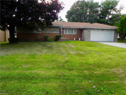 Photo of 16 Homestead Pl, Campbell, OH 44405 (MLS # 4217681)