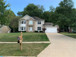 Photo of 2970 Mathers Way, Twinsburg, OH 44087 (MLS # 4218123)