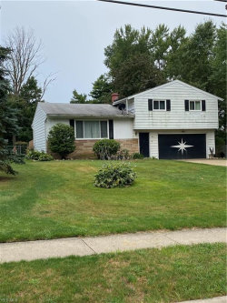 Photo of 2388 Sherwin Dr, Twinsburg, OH 44087 (MLS # 4219898)