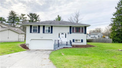 Photo of 3602 South Raccoon Rd, Canfield, OH 44406 (MLS # 4221992)