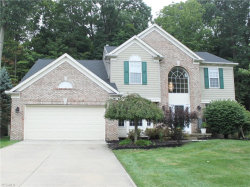 Photo of 1692 Maplegrove Dr, Twinsburg, OH 44087 (MLS # 4222496)