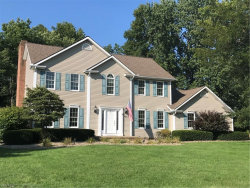 Photo of 560 Neff Dr, Canfield, OH 44406 (MLS # 4222702)