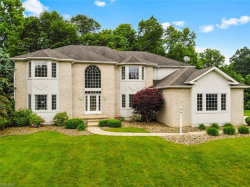Photo of 8526 Twin Oaks Ct, Poland, OH 44514 (MLS # 4223088)