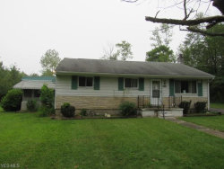 Photo of 16794 Huron St, Chagrin Falls, OH 44023 (MLS # 4224052)